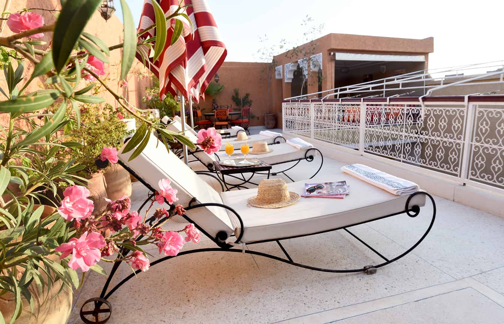The sun terrace, Riad Shaden Marrakech
